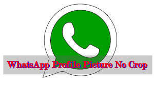 Set Whatsapp DP Without Cropping