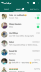 use someone whatsapp in your mobile (11)