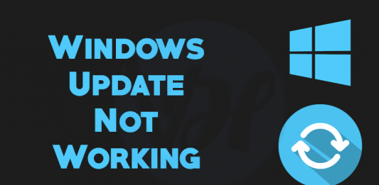 Windows-Update-Not-Working