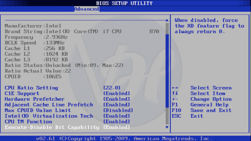 how to update your bios windows xp