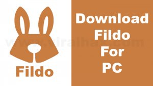 Download Fildo For PC