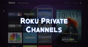 5 Best Roku Private Channels of 2019 - Viral Hax