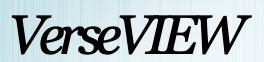 VerseVIEW